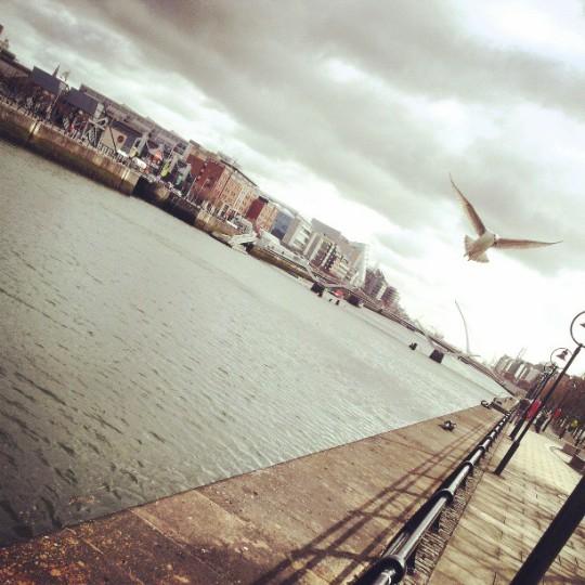 Foto do dia - Docklands D1